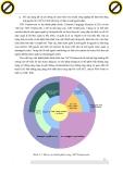 Giáo trình phân tích khả năng truy cập các thành phần tùy biến trong mảng có kích thước khác nhau p3