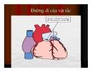Giải phẫu bệnh - Tắc mạch ( Embolie) part 2