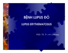 Bài giảng bệnh Lupus đỏ -  Lupus erythematosus part 1