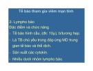 Bài giảng bệnh học viêm part 10