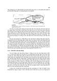 Khí tượng học synốp (Phần nhiệt đới) - Trần Công Minh Phần 4