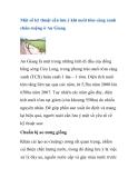 Một số kỹ thuật cần lưu ý khi nuôi tôm càng xanh chân ruộng ở An Giang