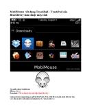 MobiMouse Sử dụng TrackBall - TrackPad của BlackBerry làm chuột máy tính