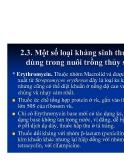 Bệnh học thủy sản : Các loại thuốc thương dùng part 3