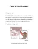Chứng Ợ Nóng (Heartburn)