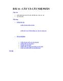 Cấu trúc dữ liệu và giải thuật I - Bài 11