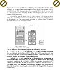 Giáo trình phân tích khả năng vận chuyển địa chỉ trong kỹ thuật table indecator p9