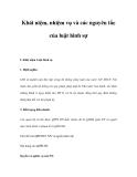 Khái niệm, nhiệm vụ và các nguyên tắc của luật hình sự