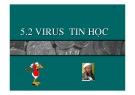 GIÁO TRÌNH TIN HỌC CĂN BẢN_CHƯƠNG 8: VIRUS TIN HỌC