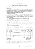 Lý thuyết kế toán - Chương 8