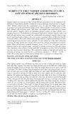 """Báo cáo nghiên cứu khoa học: """"NGHIÊN CỨU THỰC NGHIỆM ẢNH HƯỞNG CỦA MƯA AXÍT LÊN TÔM SÚ (PENAEUS MONODON)"""""""