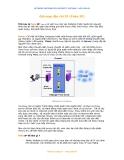 bảo mật mạng các phương thức giả mạo địa chỉ IP fake IP