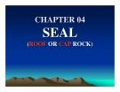 Địa chất dầu khí ( petroleum geology ) - Chương  4