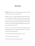 Tài liệu Abces gan