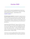 Thủ thuật sử dụng máy tính: Căn bản về RSS