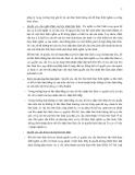 Nội dung cơ bản về giao dịch bảo đảm - phần 3
