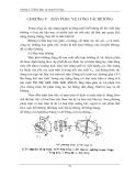 máy xậy dựng và kỹ thuật thi công phần 8