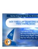 Lập trình ứng dụng trên Visual Basic