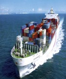 Câu hỏi về Bảo hiểm hàng hải