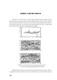 Nhập môn kỹ thuật dự báo thời tiết số - Chương 10
