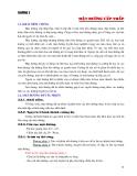 Thi công mặt đường ô tô - Chương 3