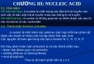 CHƯƠNG III: NUCLEIC ACID