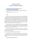 TỔ CHỨC BÁN HÀNG - CHIẾN LƯỢC VÀ CƠ CẤU TỔ CHỨC LỰC LƯỢNG BÁN HÀNG CÔNG TY