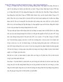 Thực tế phân tích tình hình tài chính tại Cty Sao Việt - 3