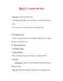 Giáo án tự nhiên xã hội lớp 2:Tên bài dạy Bài 5: Cơ quan tiêu hóa