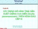 Chuyên đề:  XÂY DỰNG MÔ HÌNH TRẠI SẢN XUẤT GIỐNG CUA BIỂN (Scylla paramamosain) TRÊN KÊNH ĐÀO CẤP III