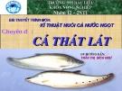 Bài thuyết trình chuyên đề: Cá thát lát