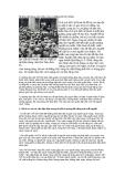 Những nội dung chủ yếu của tư tưởng Hồ Chí Minh