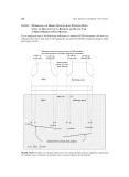 Handbook Of Shaft Alignment Episode 2 Part 10