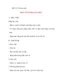 Giáo án lớp 5 môn Mỹ Thuật: BÀI 12: Vẽ theo mẫu MẪU VẼ CÓ HAI VẬT MẪU