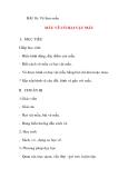 Giáo án lớp 5 môn Mỹ Thuật: BÀI 16: Vẽ theo mẫu MẪU VẼ CÓ HAI VẬT MẪU