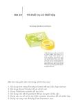 Adobe Illustrator CS2 - Bài 10