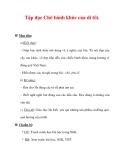 Giáo án Tiếng Việt lớp 3 : Tên bài dạy : Tập đọc Chõ bánh khúc của dì tôi.