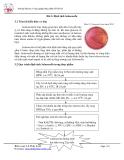 Bài thực hành phân tích vi sinh thực phẩm : Định tính Salmonella