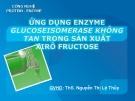 """Báo cáo: """"ứng dụng công nghệ enzyme GLUCOSEISOMERASE không tan trong sản xuất xiro fructose"""