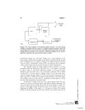 Biosignal and Biomedical Image Processing phần 2