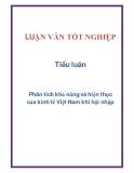 Tiểu luận: Phân tích khả năng và hiện thực của kinh tế Việt Nam khi hội nhập