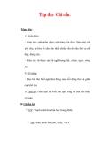 Giáo án Tiếng Việt lớp 3 : Tên bài dạy : Tập đọc Cái cầu.