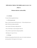 VIÊM MÀNG TRONG TIM NHIỄM KHUẨN BÁN CẤP (PHẦN 2)