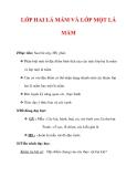 Giáo án Sinh học lớp 6 : Tên bài dạy : LỚP HAI LÁ MẦM VÀ LỚP MỘT LÁ MẦM
