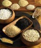 Mẹo bảo quản gạo và ngũ cốc