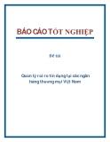 Đề tài: Quản lý rủi ro tín dụng tại các ngân hàng thương mại Việt Nam