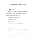 Giáo án Anh văn lớp 6 : Tên bài dạy : GRAMMAR PRACTICE
