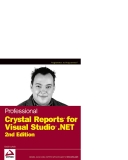 Wrox Professional Crystal Reports for Visual Studio NET Second Edition phần 1
