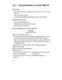 Thiết kế bài giảng tự nhiên xã hội 2 part 2