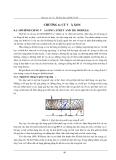 Bài giảng Kết Cấu Bê Tông theo 22TCN 272-05 -  CHƯƠNG 6: CẮT VÀ XOẮN